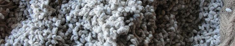 A bag of cotton seeds for cattle