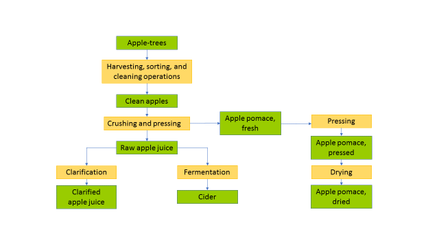 Apple processing yields apple juice, cider and apple pomace