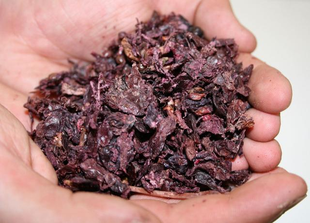 Grape pomace (red grape)