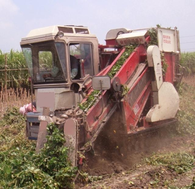 Peanut harvester